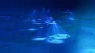 Ganz in der Ferne: Der Bug der Titanic